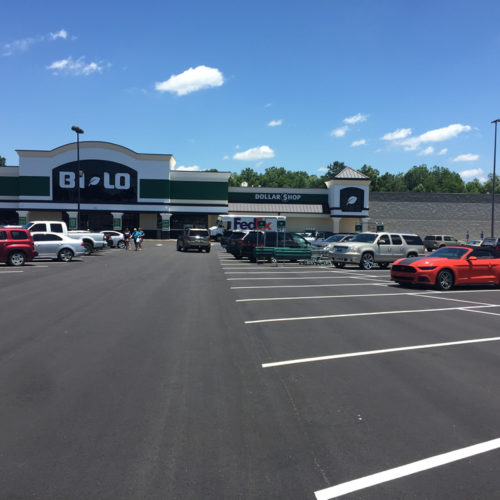 Moncks Corner - Bi-Lo Center Image 1